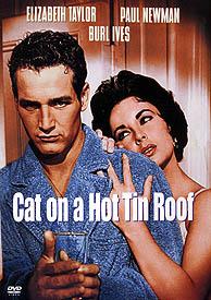 Kočka na rozpálené střeše